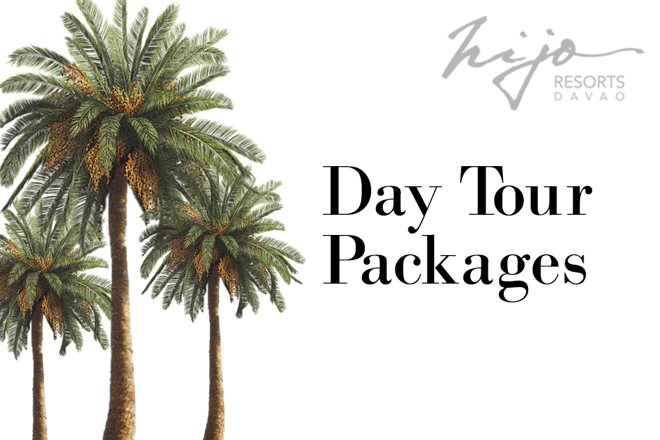 day tour- website